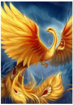 Vták ohnivák